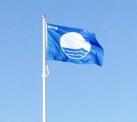 Dorset Blue Flag Beaches image