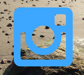 Dorset Instagram Accounts You Need To Follow